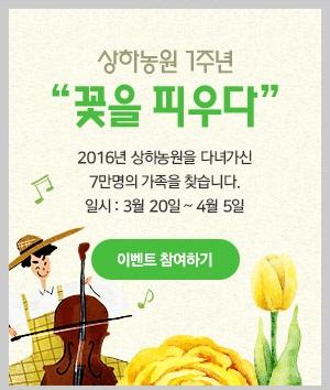 상하농원 1주년 꽃을 피우다